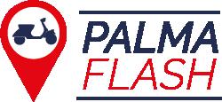 desarrollo de sistemas palmaflash