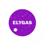desarrollo de sistemas elygas